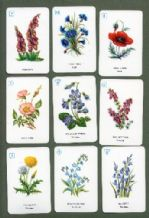 Collectible cards game Wild Flowers by Pepys